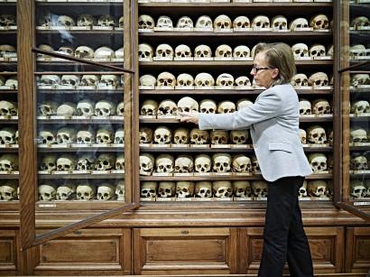 Human-Anthropologie_010.jpg